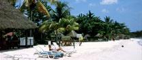 box-jamaica-why-visit